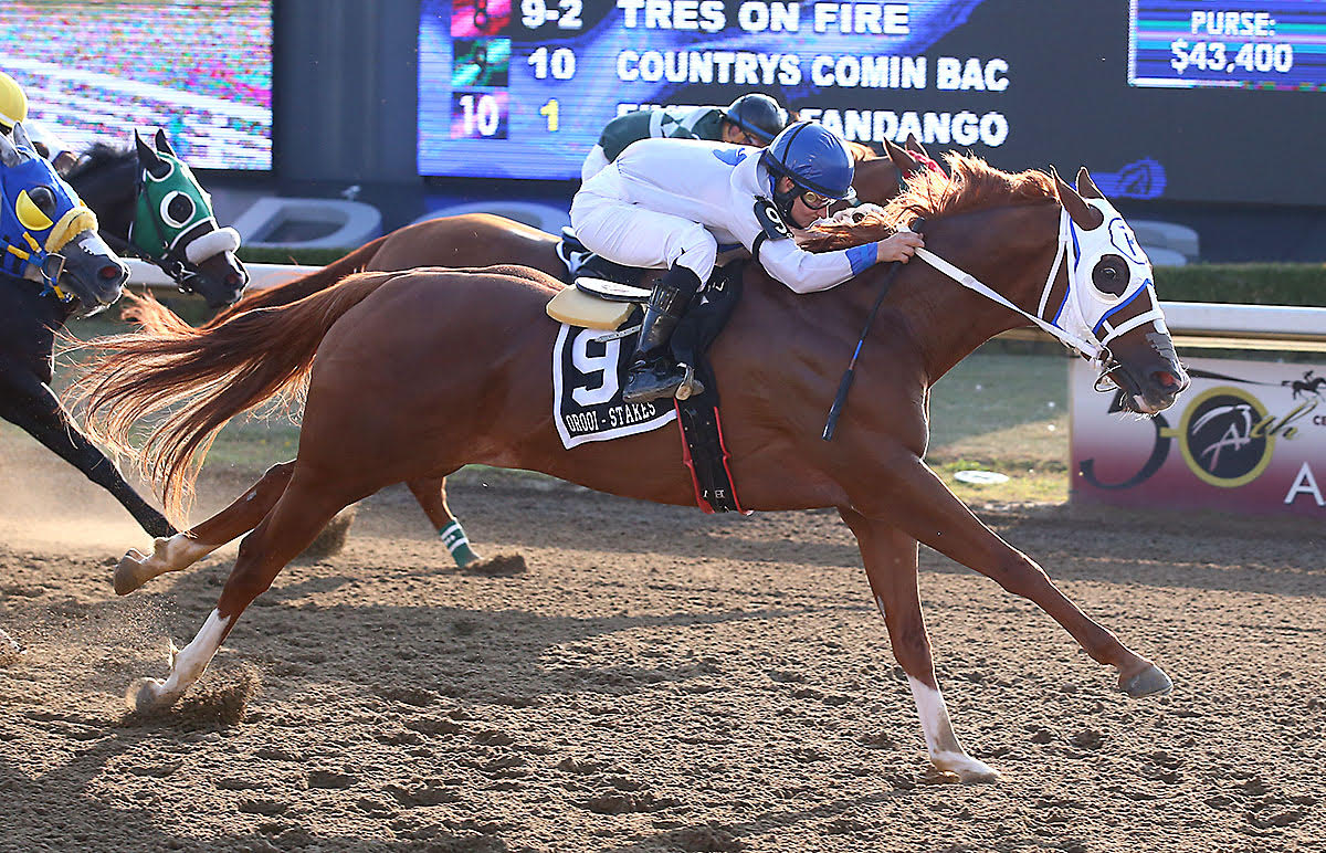 EC Greys Anatomy Wins Picov Derby For First Time Owner Anna Rosiak / Countrys Comin Bac Springs Upset in Ontario Bred Maturity