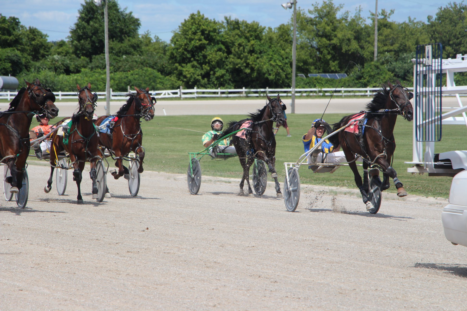 Nick Barnsdale's Leamington Raceway Selections: Sunday, August 9, 2020