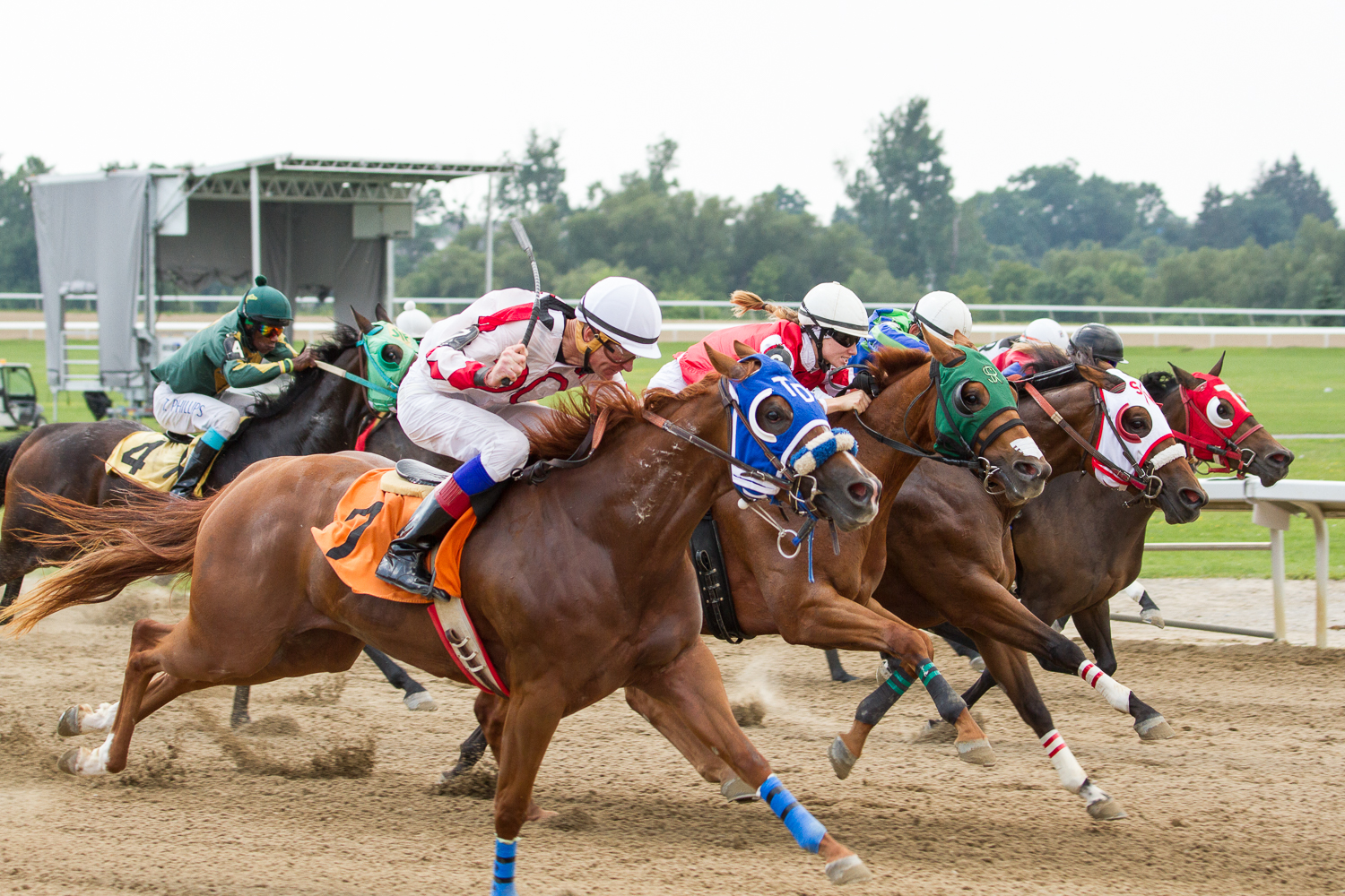 50 years of Travel Day at Ajax Downs; $50,000 Futurity for 2-year-olds