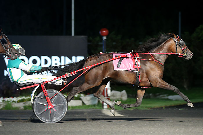 Trotting fillies in spotlight at Flamboro Downs Thursday