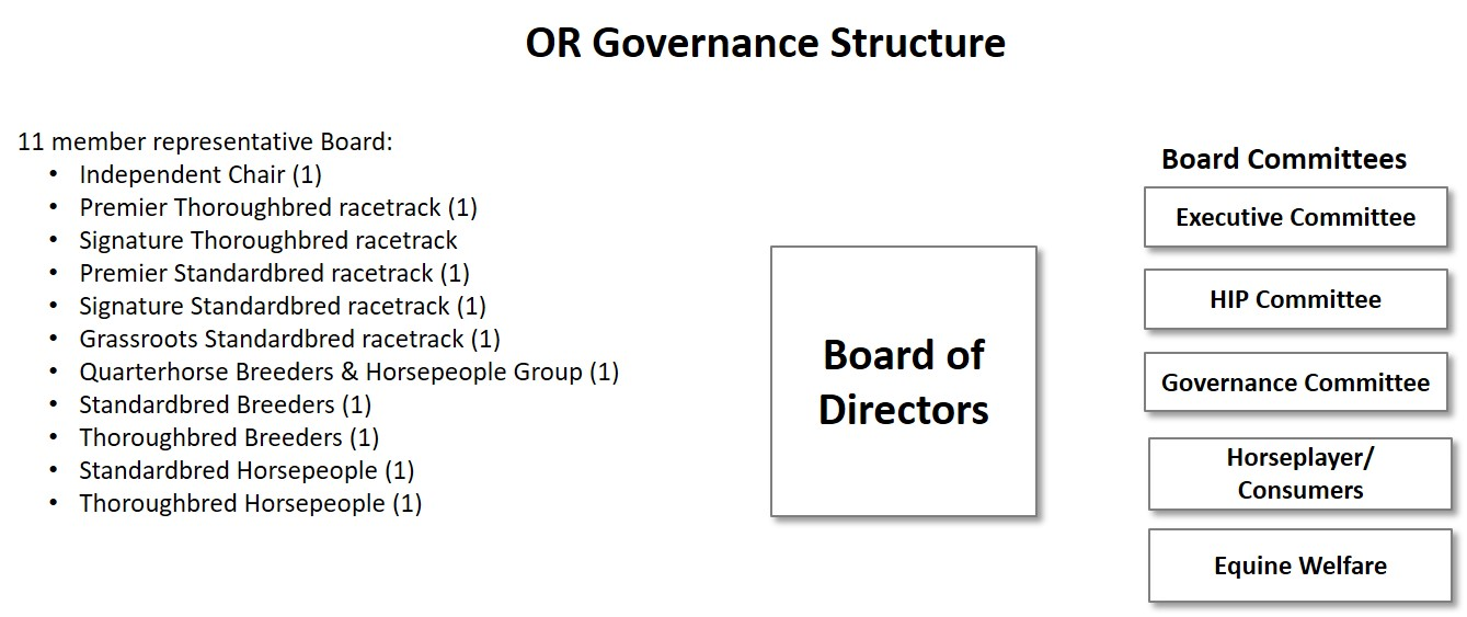 OR Governance Strucure