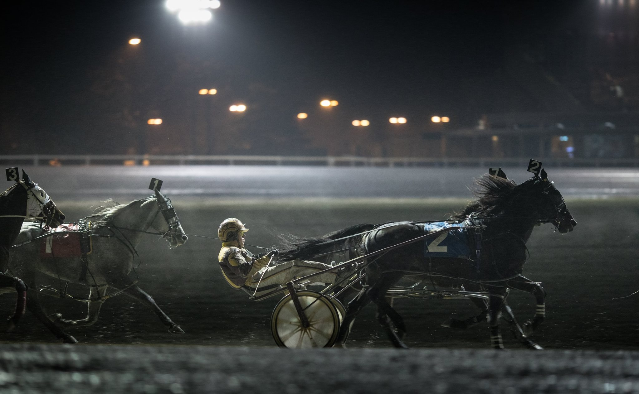 Garnet Barnsdale's Flamboro Downs Selections: Saturday, February 27, 2021
