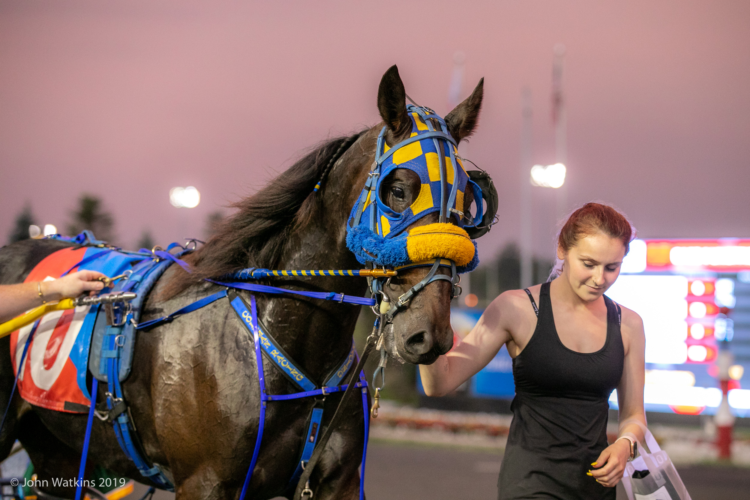 Woodbine Entertainment To Temporarily Suspend Racing At Mohawk Park