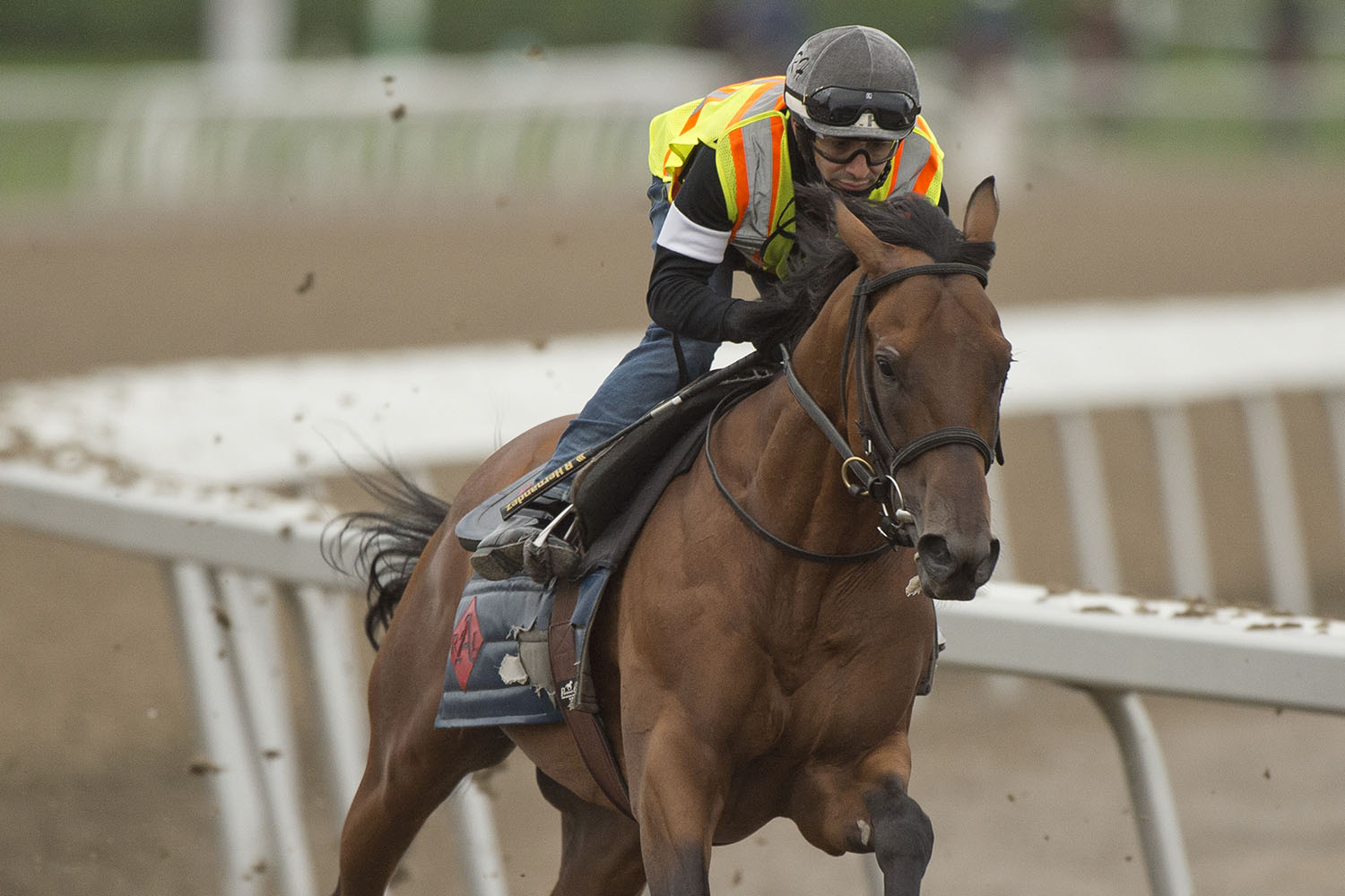Turf talents look to go the extra mile in Ricoh Woodbine Mile