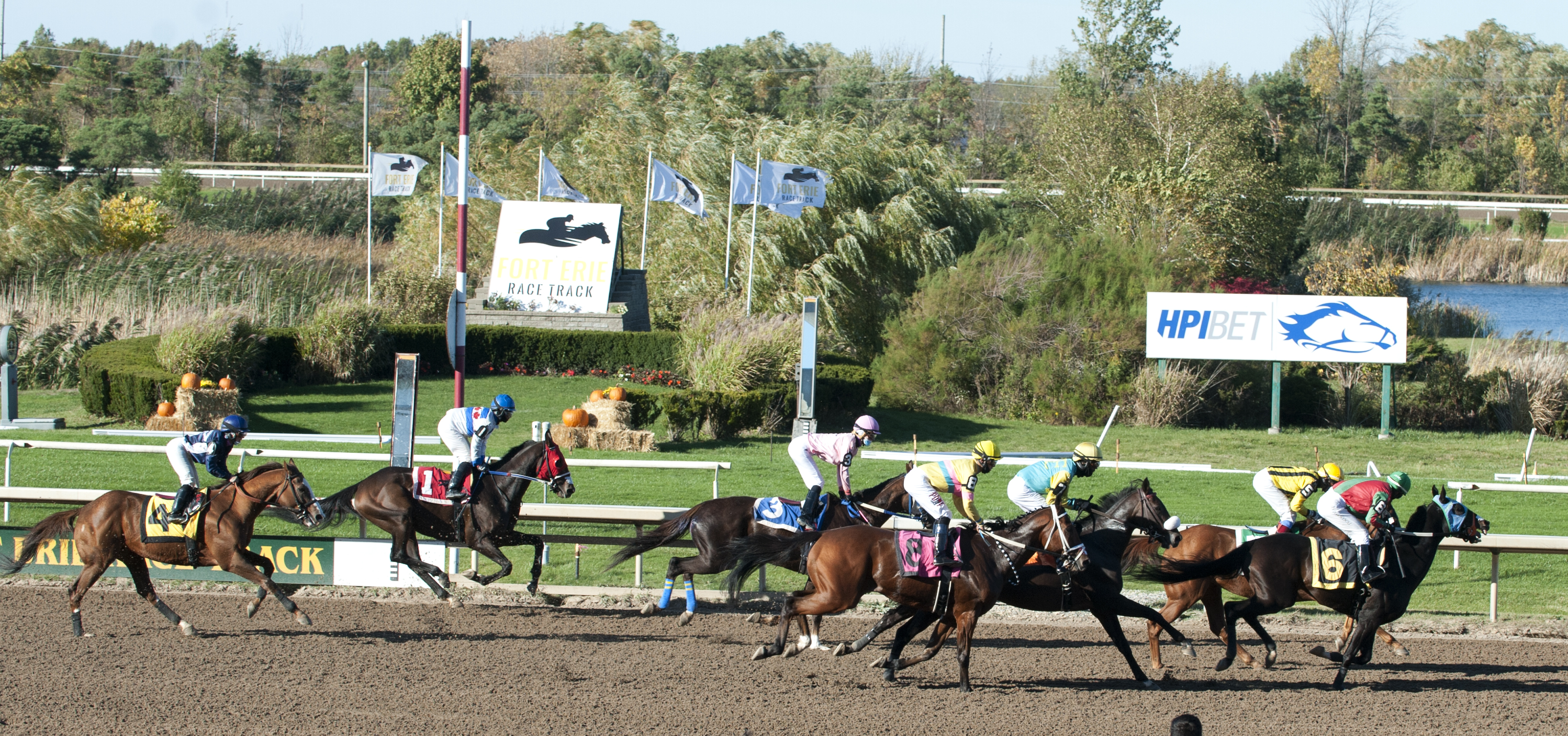Successful end to Fort Erie's racing season