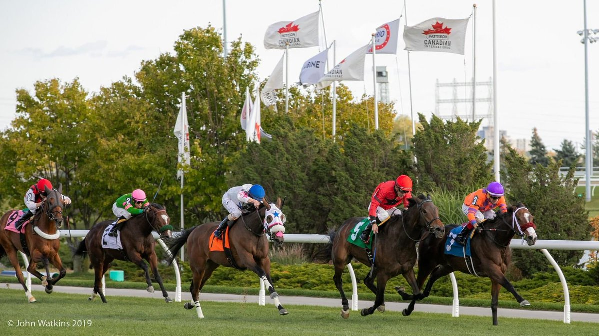 New Friday post times for Woodbine Thoroughbred racing