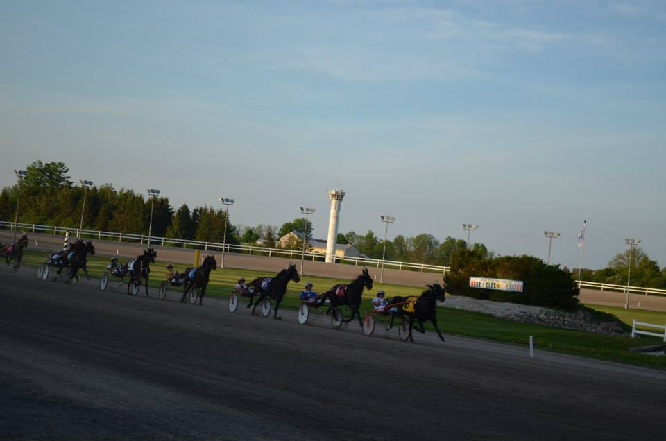 Garnet Barnsdale's Flamboro Downs Selections: Tuesday, October 20, 2020