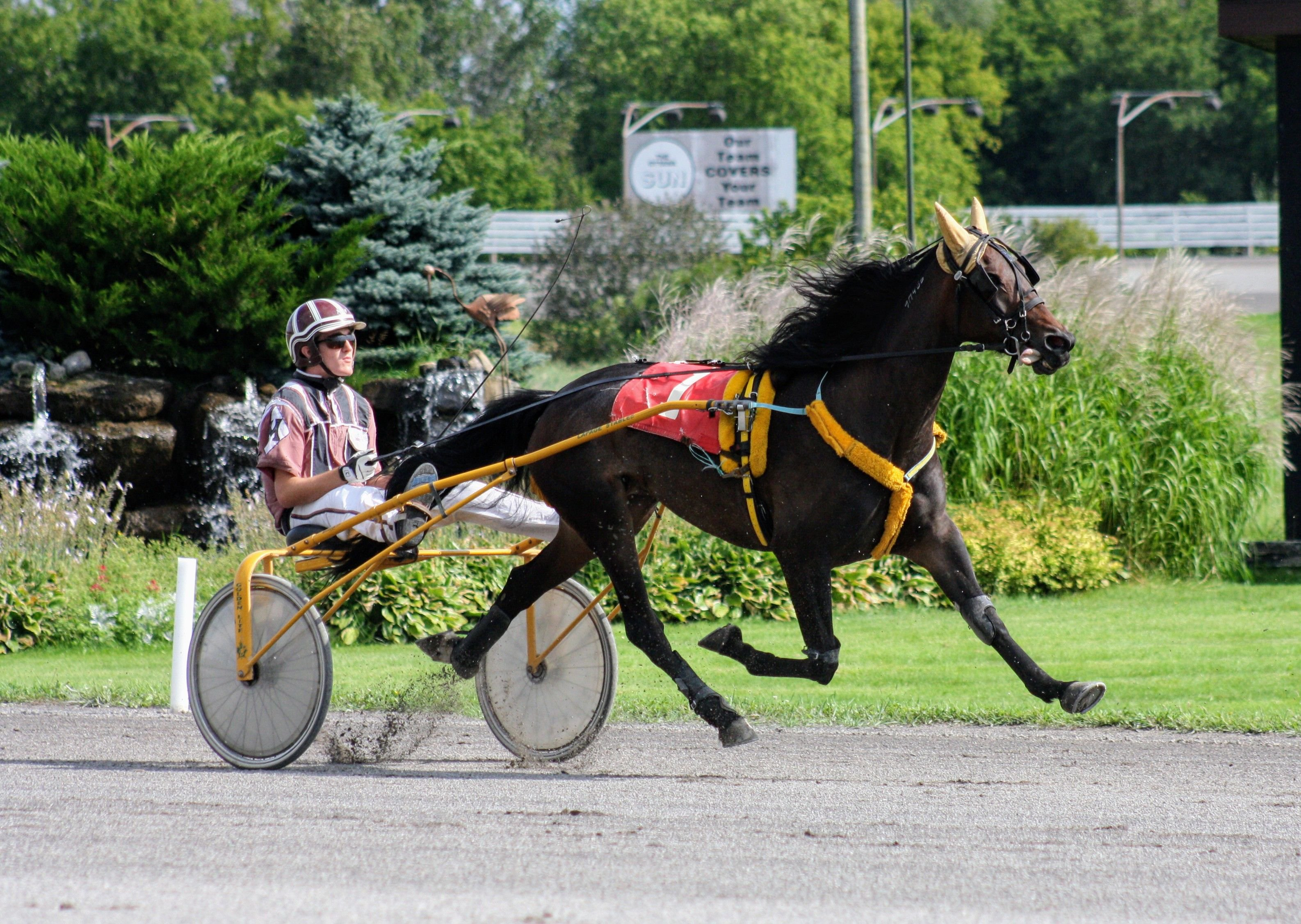 Melissa Keith's Rideau Carleton Raceway Selections: Sunday, July 26, 2020