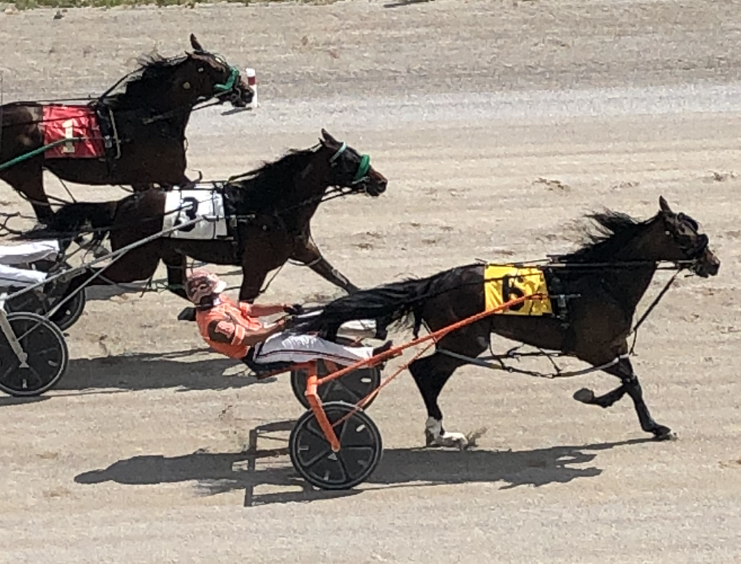 Dreaming Out Loud Stays Perfect With Austin Win At Dresden