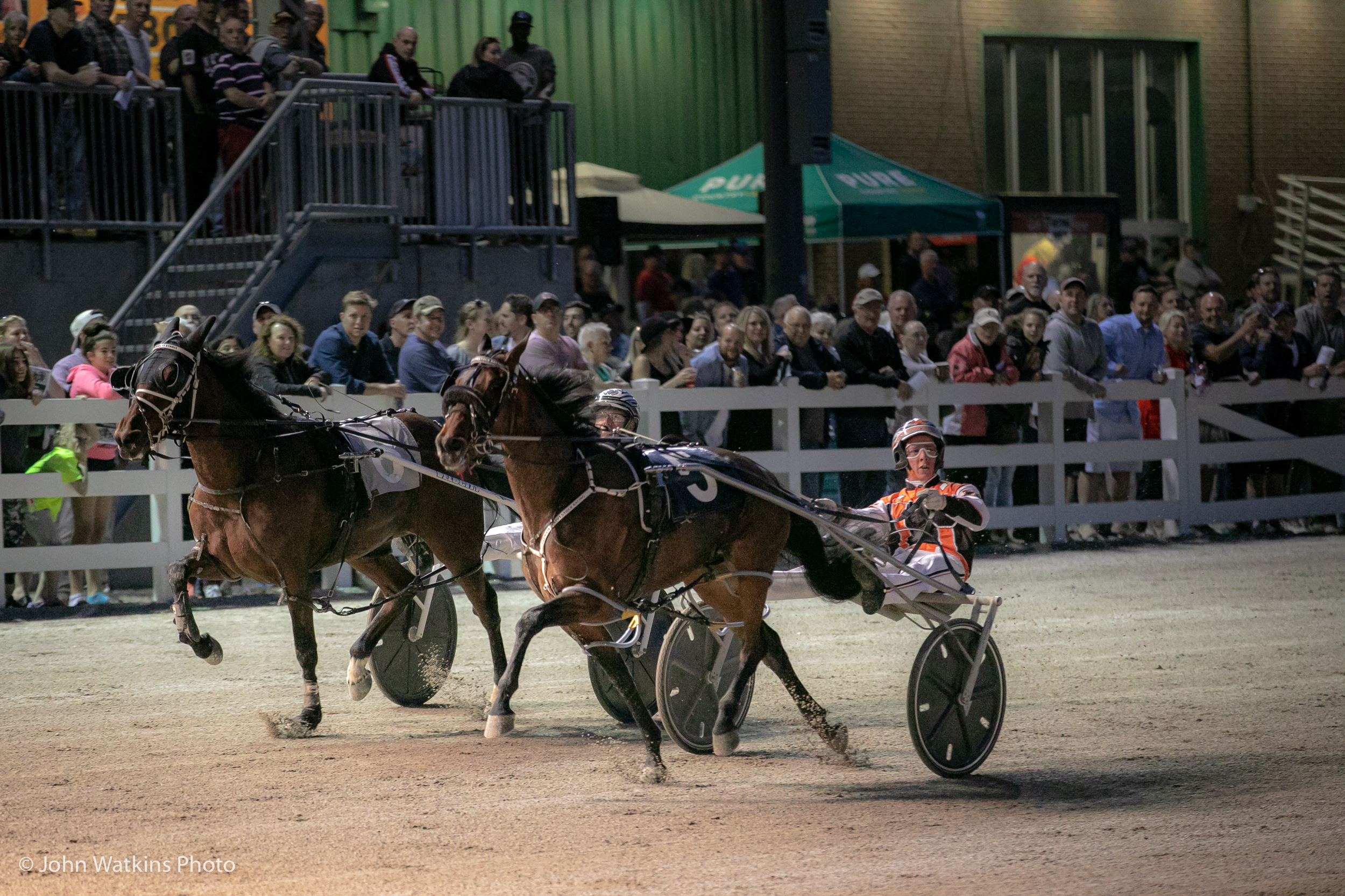 Live standardbred racing temporarily halted in Ontario; Ontario Racing to continue providing regular industry updates, news, features and more