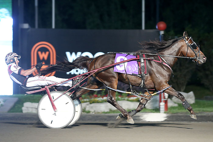 McNair's pacing colt brigade pads his Johnston Cup total