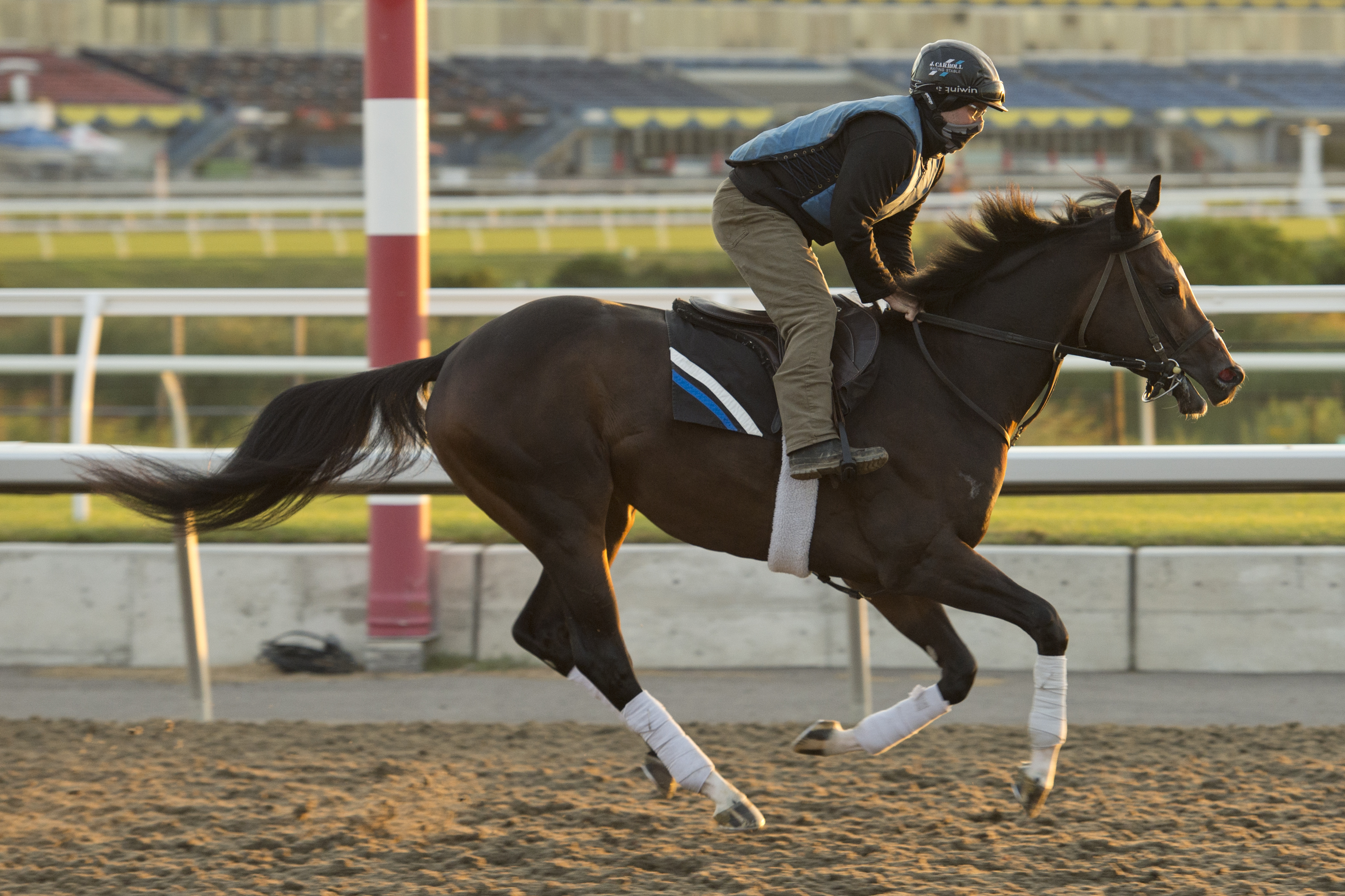Field of nine set for 85th Prince of Wales Stakes / Mighty Heart continues quest for OLG Canadian Triple Crown
