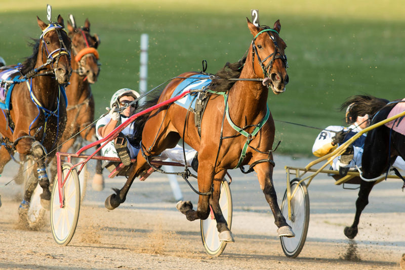 Confederation Cup & Battle of Waterloo/Belles included in Woodbine stakes payment suspension