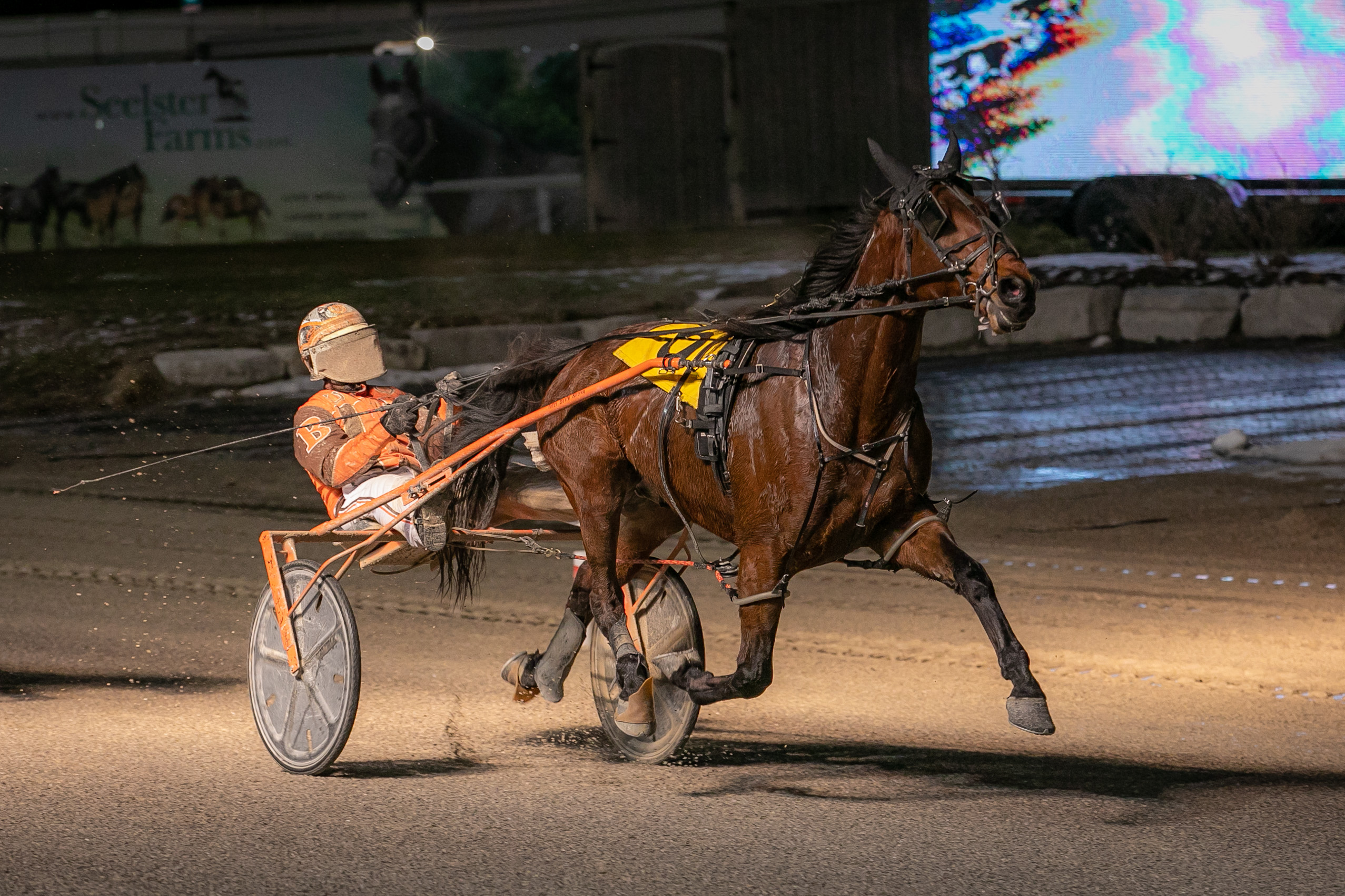 Garnet Barnsdale's Western Fair Raceway Selections: Friday, November 27, 2020