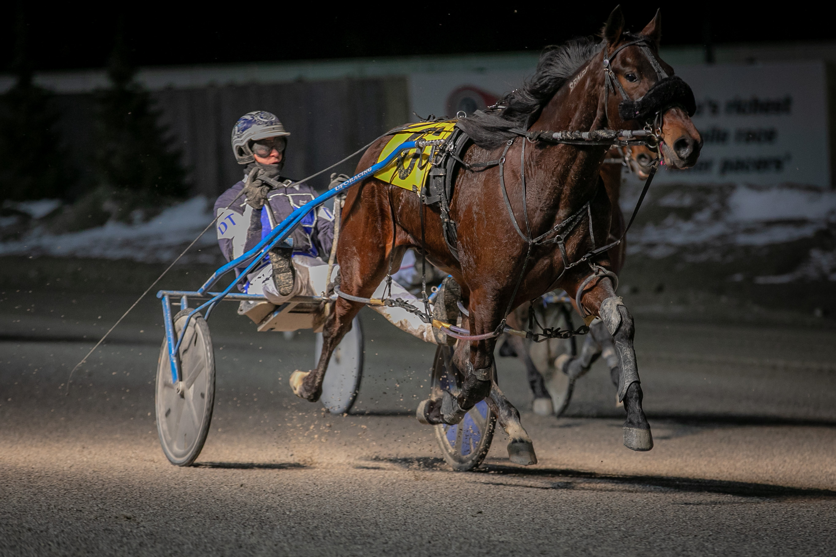 Michael Carter's Western Fair Selections: Wednesday, February 17, 2021